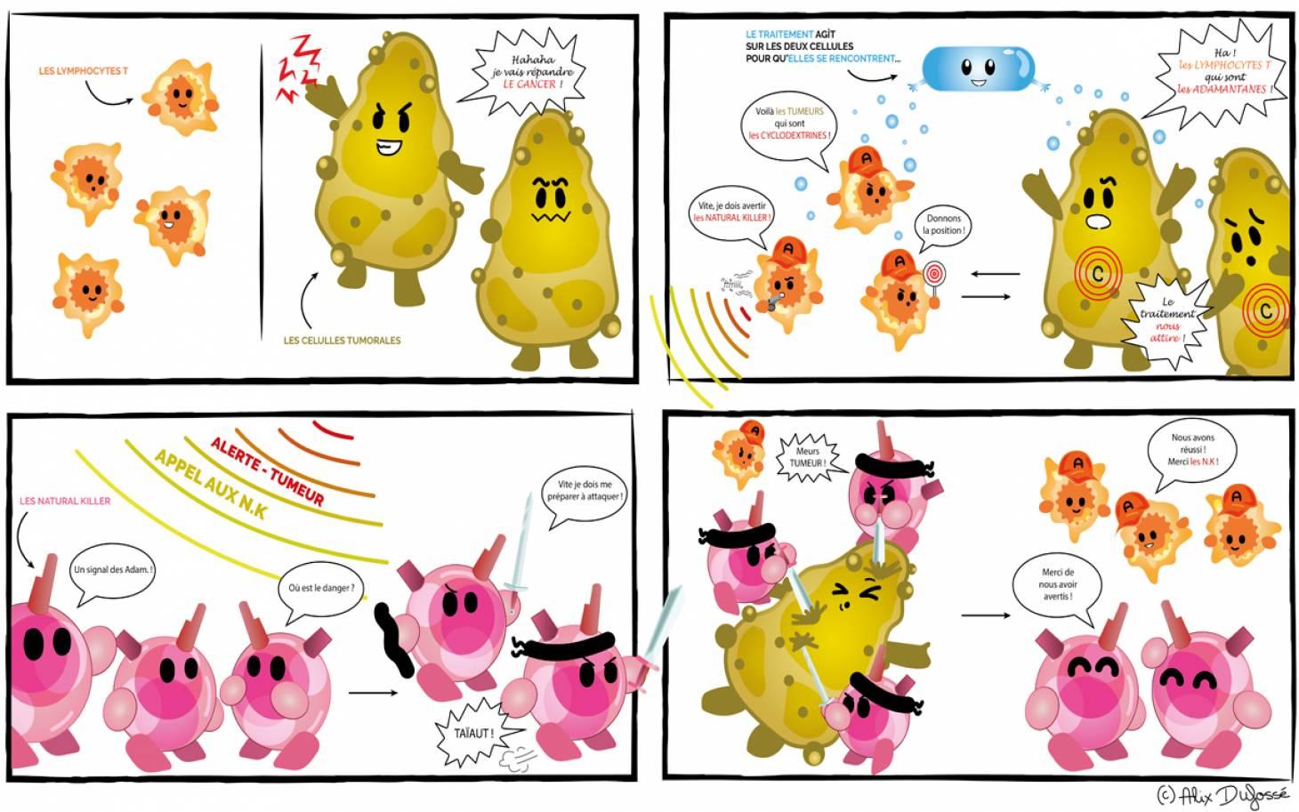 Cancers – Des chercheurs poitevins programment des cellules immunitaires pour s'attaquer aux tumeurs