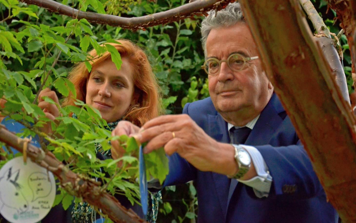 Journée mondiale Alzheimer - Un arbre pour symboliser le combat contre la maladie