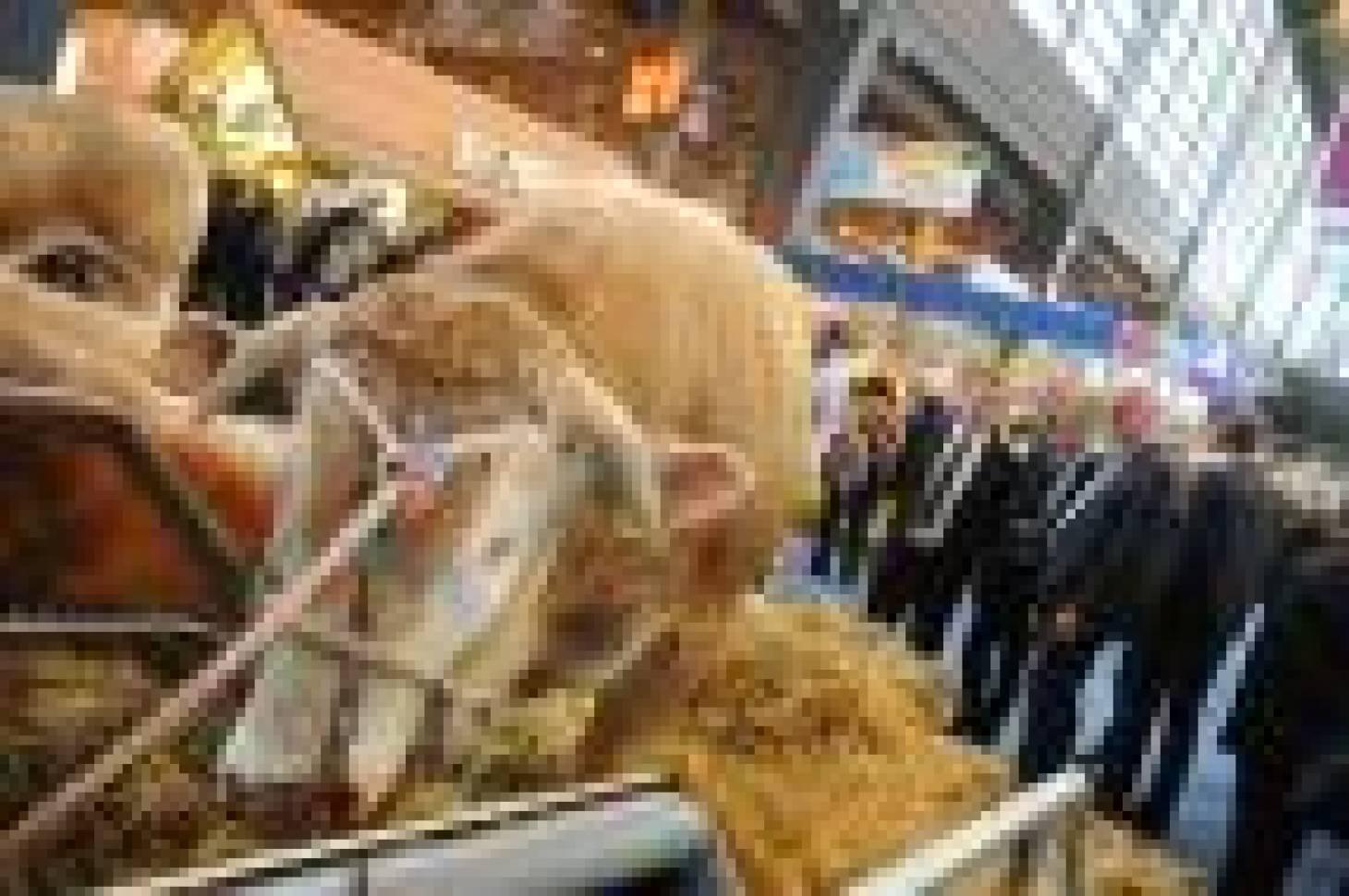 La Nouvelle-Aquitaine en force au Salon de l'agriculture