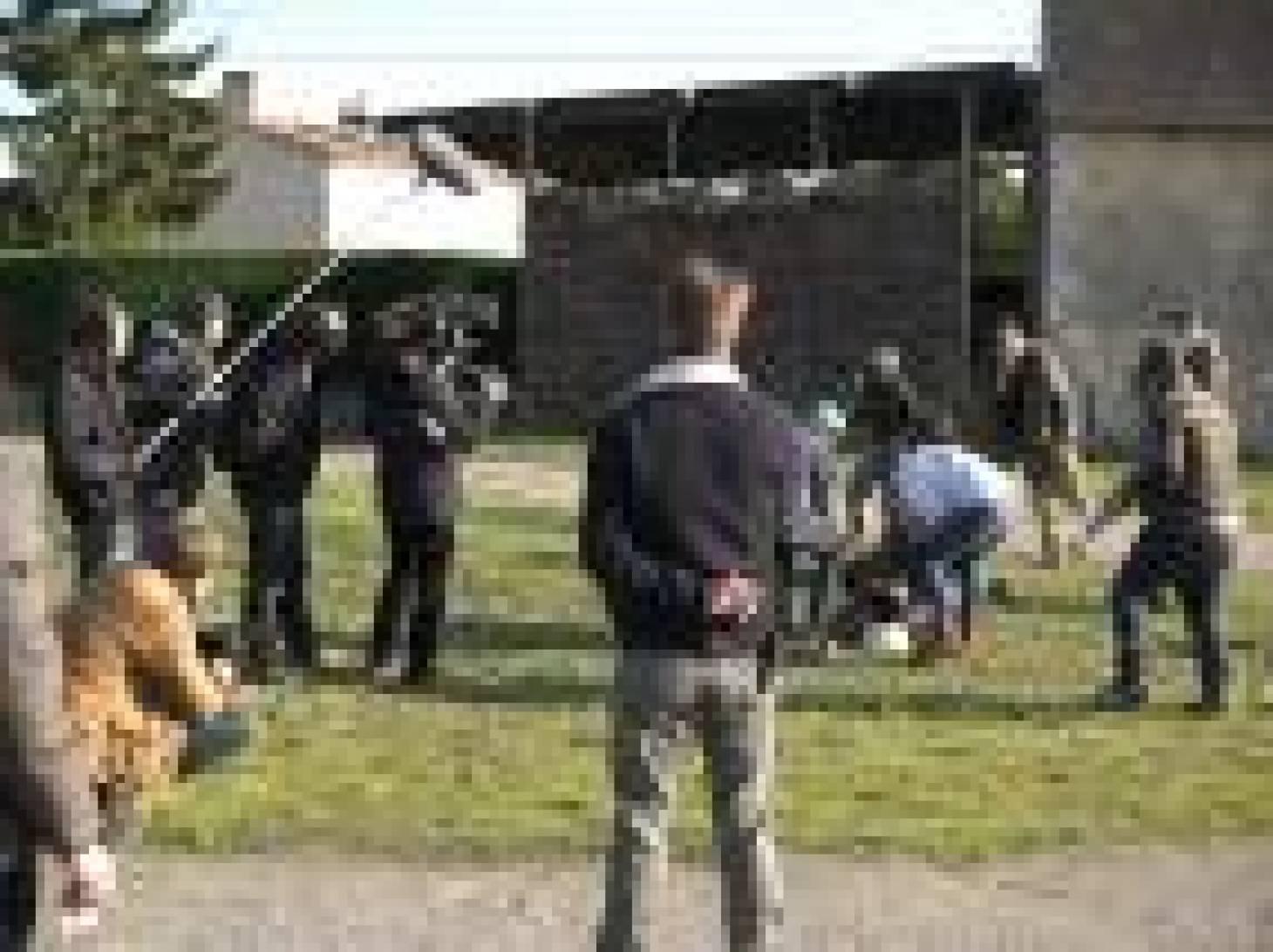 Les assistants réalisateurs sortent de l'ombre