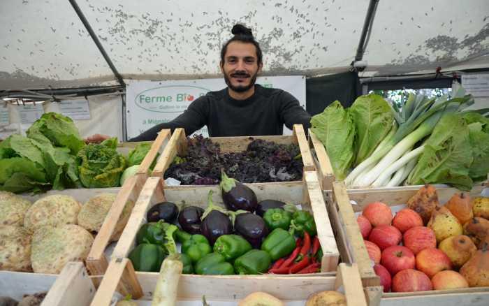 Mois de la bio : +10,4% de fermes bio dans la Vienne en 2019