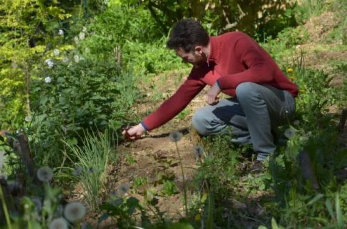 La permaculture ou l'art de l'observation