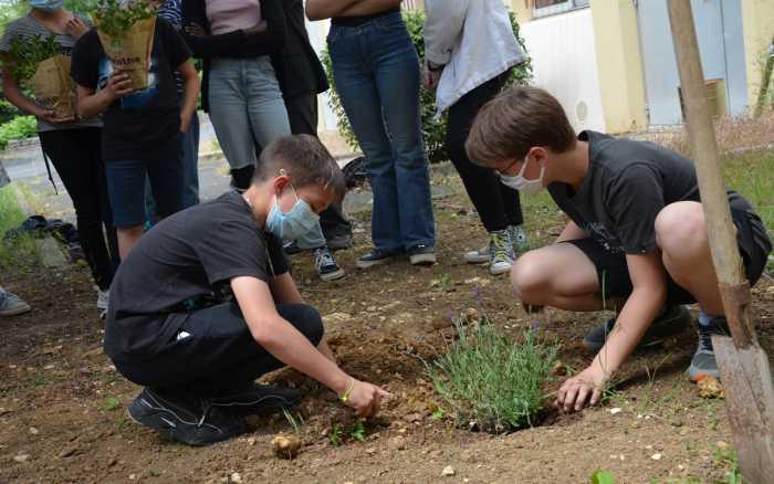Ecologie: les collégiens en action
