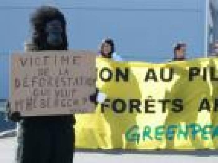 Greenpeace passe à l'acte