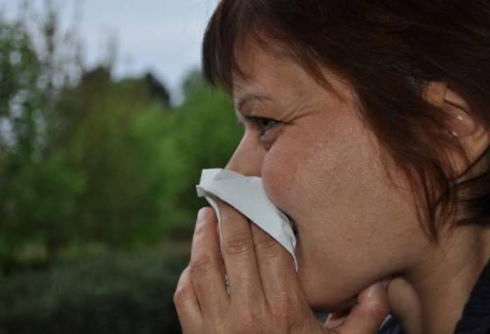 Allergie, quand tu nous tiens !