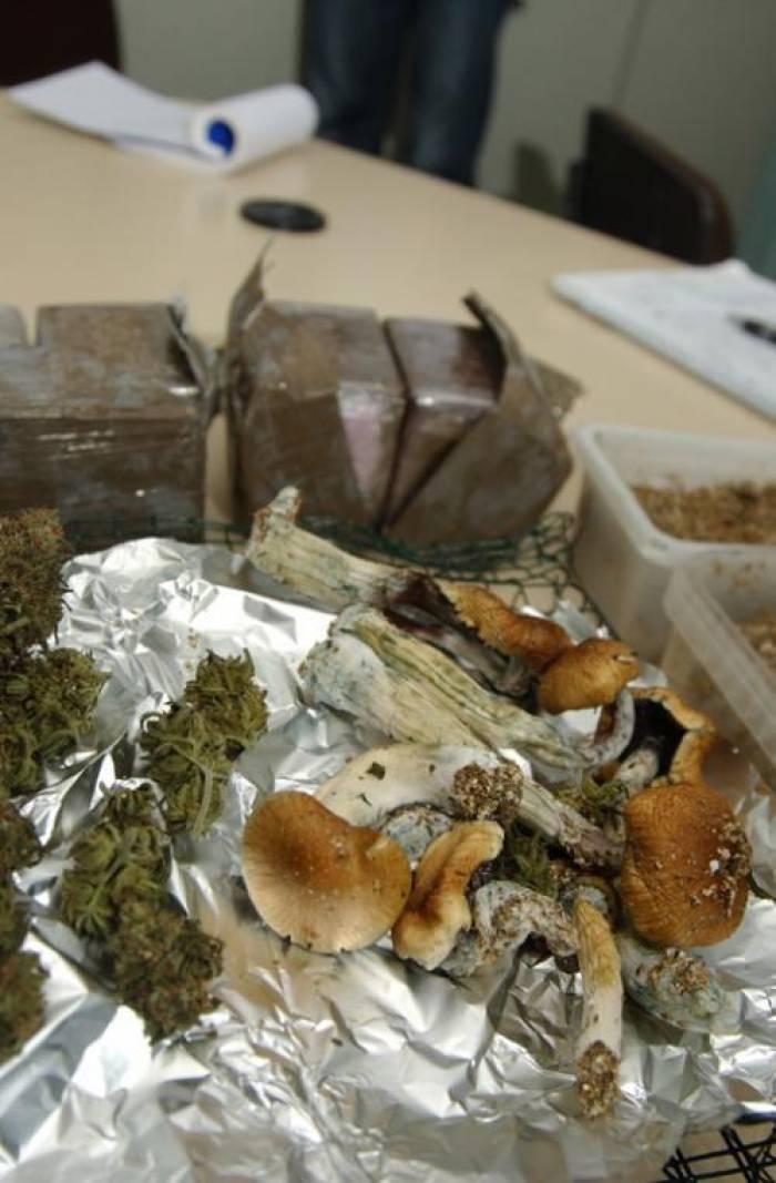 2kg de cannabis et champignons saisis